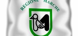 GIORNATA DELLE MARCHE 10 DICEMBRE 2015, RINGRAZIAMENTI